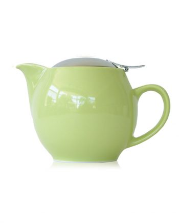 Kiwi teapot that holds 2-3 cups